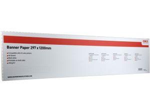 29,7x120, banner, 160 g/mq, 40 fogli, 1 risma